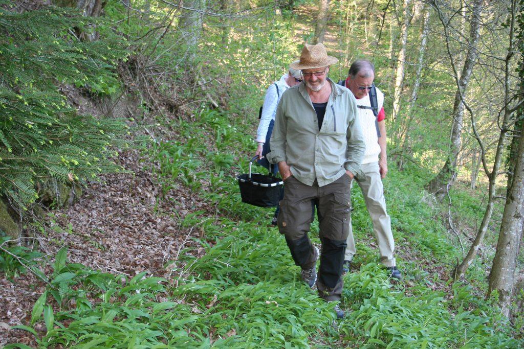 Oberharmersbacher beim Bärlauch sammeln